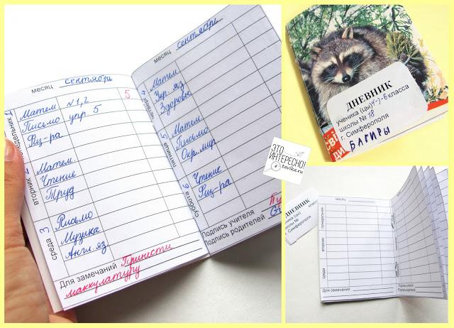 Как сделать дневник школьный своими
